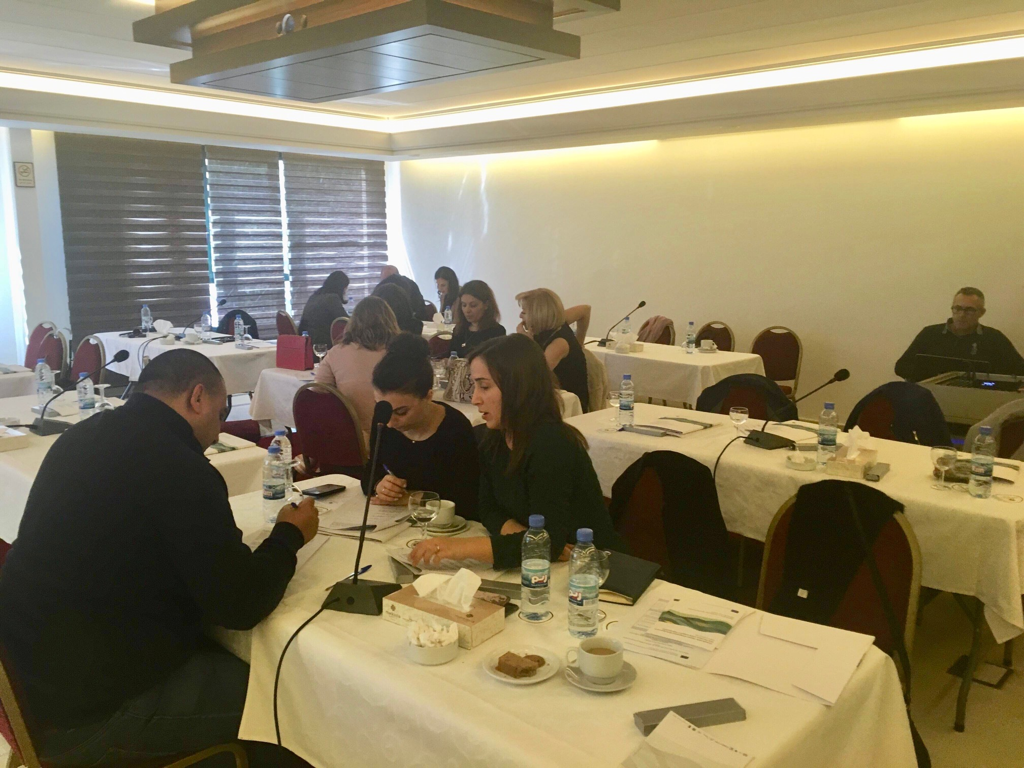 14 March 2019, Beirut, Lebanon – SWIM-H2020 SM Consultation Workshop on defining policy targets and a Programme of Measures in the Nahr Elkelb River Basin